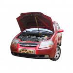 Газовый упор капота для Chevrolet Aveo t200 с 2011+ 1 шт.