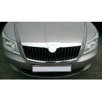 Накладка передней эмблемы Skoda Octavia (A5) 2004-2013 - AutoPlast