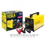Пуско-зарядное устр-во TESLA ЗУ-40140 6-12V/15A/Start-100A/20-200AHR/стрел.индик.
